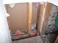 images/gallery/mold-damage/125635.1000646.jpg