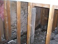 images/gallery/mold-damage/264967.1000720.jpg