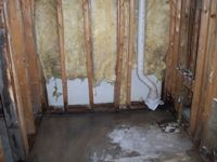 images/gallery/mold-damage/611707.1000727.jpg