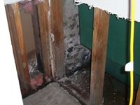 images/gallery/mold-damage/761290.1000661.jpg