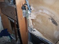 images/gallery/mold-damage/807799.1000793.jpg